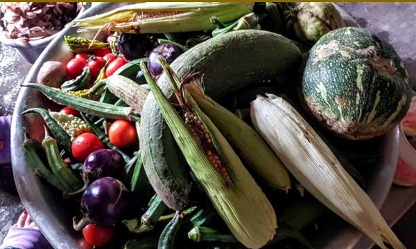 Légumes du Teraï